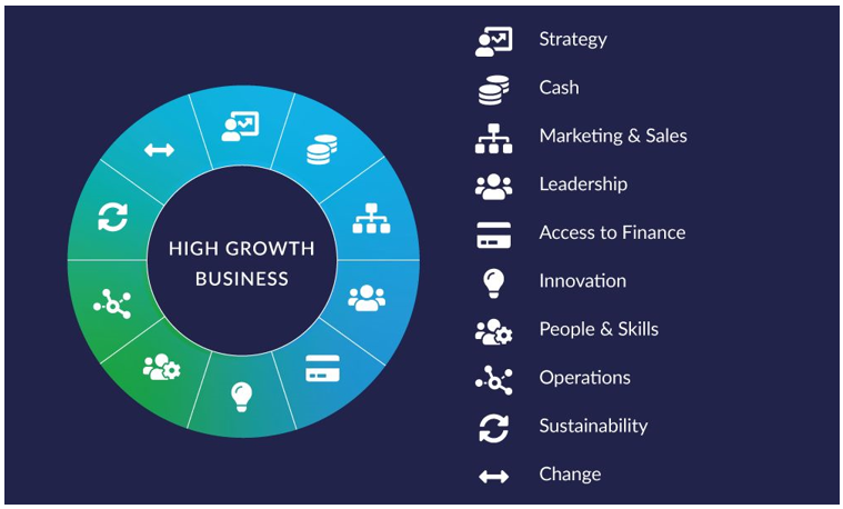 high growth business chart
